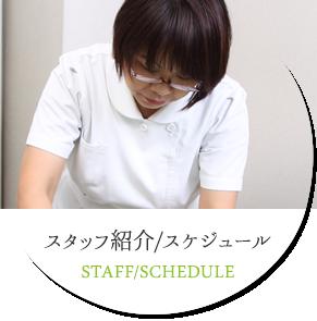 スタッフ紹介/スケジュール STAFF/SCHEDULE